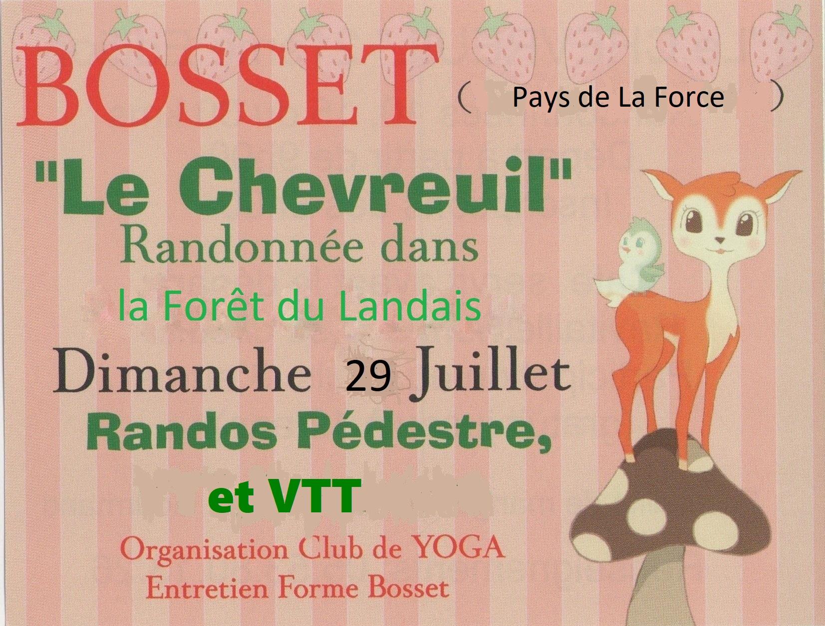 Flyer chevreuil1